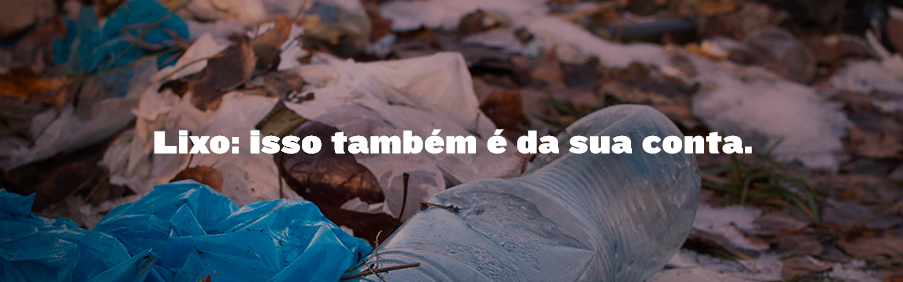 Blog_Int_Campanha_Selur-copy[1]