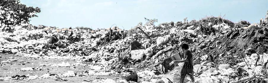 5 lixoes_capa