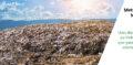 Metade das cidades brasileiras ainda despejam lixo a céu aberto, aponta ISLU 2020